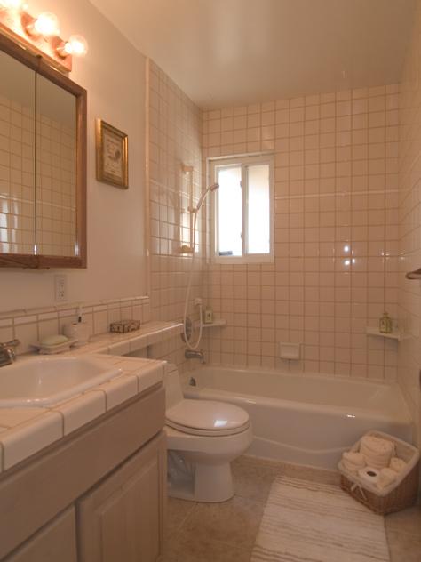 Hall Bath  - 4690 Doyle Rd