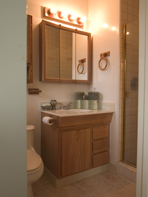 Master Bath  - 4690 Doyle Rd