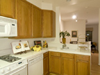 128 Pacchetti Way, Mountain View 94040 - Kitchen2