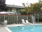 2025 California St 33, Mountain View 94040 - California St 2025 33b
