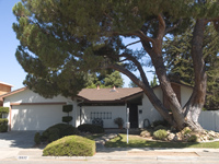 Picture of 19937 Pear Tree Ln, Cupertino 95014 - Home For Sale