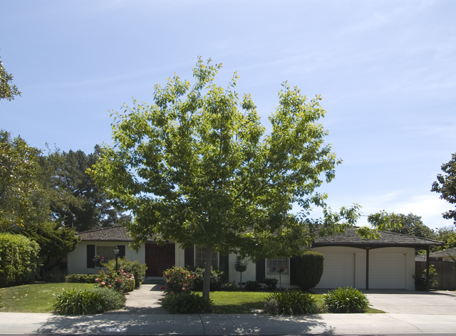 575 Madison Way, Palo Alto 94303