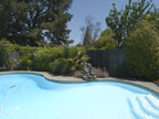 575 Madison Way, Palo Alto 94303 - Pool