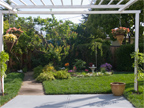 3263 Murray Way, Palo Alto 94303 - Backyard (A)