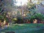 605 W Hillsdale Blvd, San Mateo 94403 - Backyard