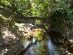Creek (B)