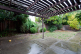 1213 Boynton Ave, San Jose 95117 - Back Yard (A)