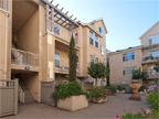 2255 Showers Dr 341, Mountain View 94040 - Court Yard (C)