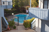 10069 Craft Dr, Cupertino 95014 - Pool