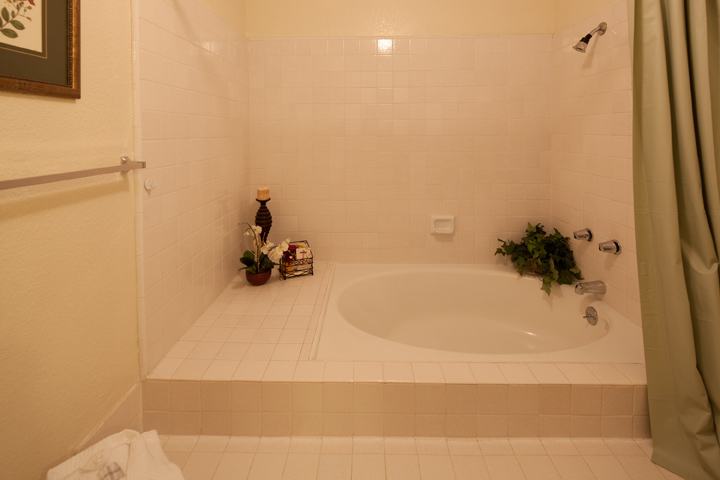 Sunken Tub  - 10069 Craft Dr