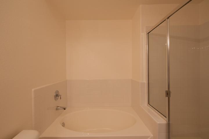 Master Bath 1 (B)