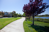109 Windrose Ln, Redwood Shores 94065 - Lagoon