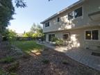 709 Charleston Ct, Palo Alto 94301 - Backyard (A)