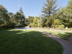 75 Crescent Dr, Palo Alto 94301 - Backyard (A)