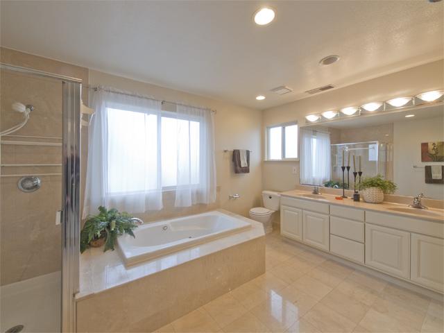 Master Bathroom (D)