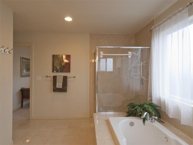 Master Bathroom (F)
