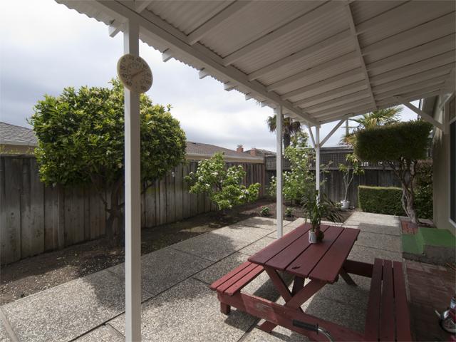 Backyard (C)