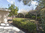 1032 Ringwood Ave, Menlo Park 94025 - Backyard (A)