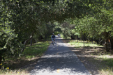 886 Chimalus Dr, Palo Alto 94306 - Bike Path