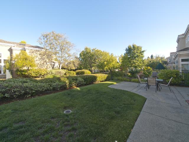 Back Yard (B) - 810 Corriente Point Dr