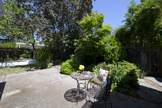 1330 S California Ave, Palo Alto 94301 - Backyard (A)