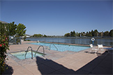 Swimming Pool 1  - 401 Baltic Cir 429, Redwood Shores 94065