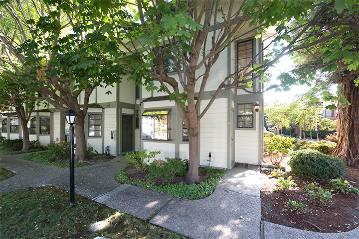 175 Evandale Ave 4, Mountain View 94043