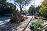 Front Yard (A) - 840 La Para Ave, Palo Alto 94306