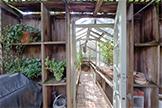 Greenhouse (A)