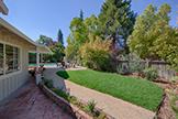 Backyard (A) - 170 Frederick Ct, Los Altos 94022