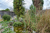 3493 Golden State Dr, Santa Clara 95051 - Pond (A)