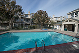 2111 Hastings Shore Ln, Redwood Shores 94065 - Pool (A)