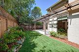 138 Hemlock Ct, Palo Alto 94306 - Backyard (B)