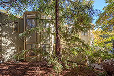 Picture of 620 Mariposa Ave 3, Mountain View 94041 - Home For Sale