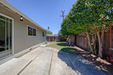 1705 Morgan St, Mountain View 94043 - Backyard (A)
