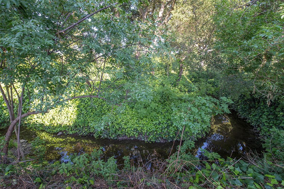 Creek (A)