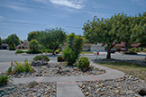 5589 Portsmouth Ave, Newark 94560 - Front Yard (A)