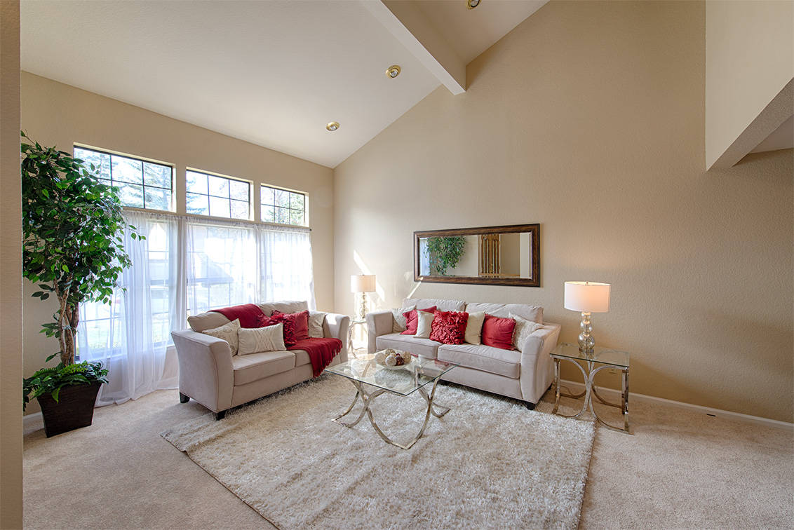 Living Room (C) - 22149 Rae Ln
