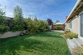 651 Spruce Dr, Sunnyvale 94086 - Backyard (A)