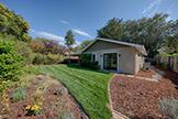 907 Clara Dr, Palo Alto 94303 - Backyard (A)