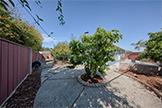 Back Yard (A) - 783 Cornell Dr, Santa Clara 95051