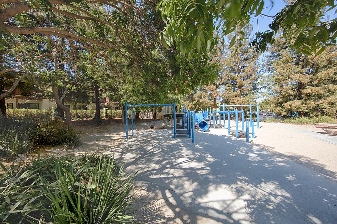 Park Playground (C)