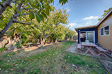 1796 Elsie Ave, Mountain View 94043 - Backyard (A)