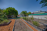 231 Lambert Ave, Palo Alto 94306 - Backyard (A)