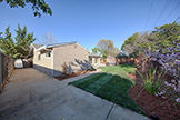 Backyard (A) - 7778 Lilac Way, Cupertino 95014