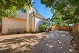 34383 Mimosa Ter, Fremont 94555 - Backyard (A)