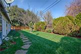 3229 Morris Dr, Palo Alto 94303 - Backyard (A)