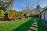 3229 Morris Dr, Palo Alto 94303 - Backyard (C)