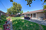 1543 Oriole Ave, Sunnyvale 94087 - Backyard (A)