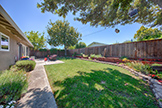 1543 Oriole Ave, Sunnyvale 94087 - Backyard (C)